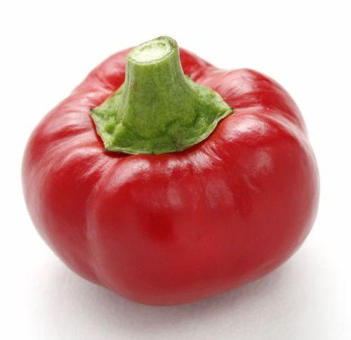Chili Topepo Rosso Chili süß -scharf Samen