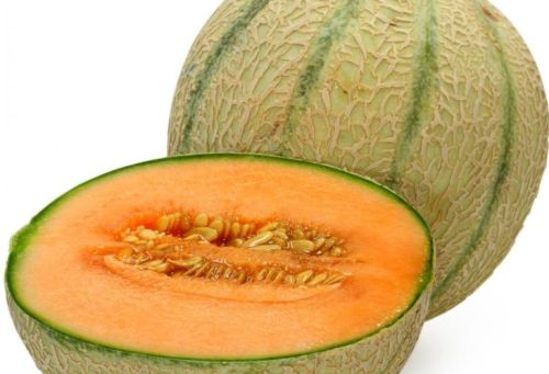 Melon Cantaloupe Hearts of Gold Melone Hearts of Gold Samen