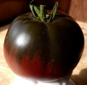 Tomate Black Sea Man tomate beefsteak noir-rouge graines
