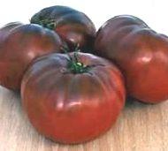 Tomate Brandywine Black Organic Fleischtomate dunkelrot-dunkelviolett Samen