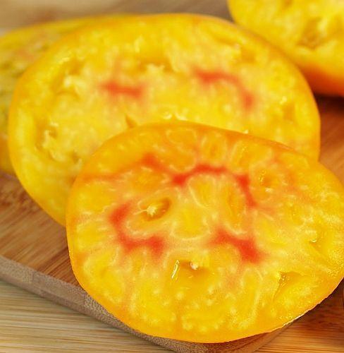 Tomate Pineapple tomate d héritage graines
