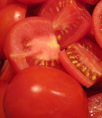 Tomate Roma V F Tomate Samen