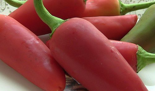 Fresno Chili hot pepper seeds