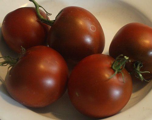 Tomate Black Prince black tomato seeds