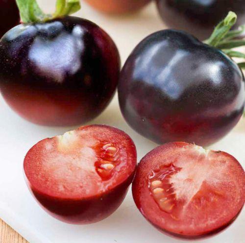 Tomate Indigo Rose blue tomato seeds
