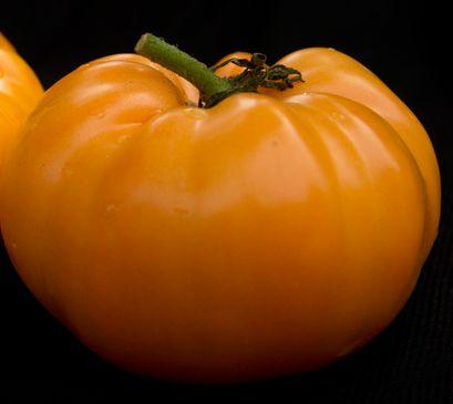Tomate Kelloggs Breakfast Heirloom tomato orange seeds